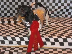 Ralph's The Winner!